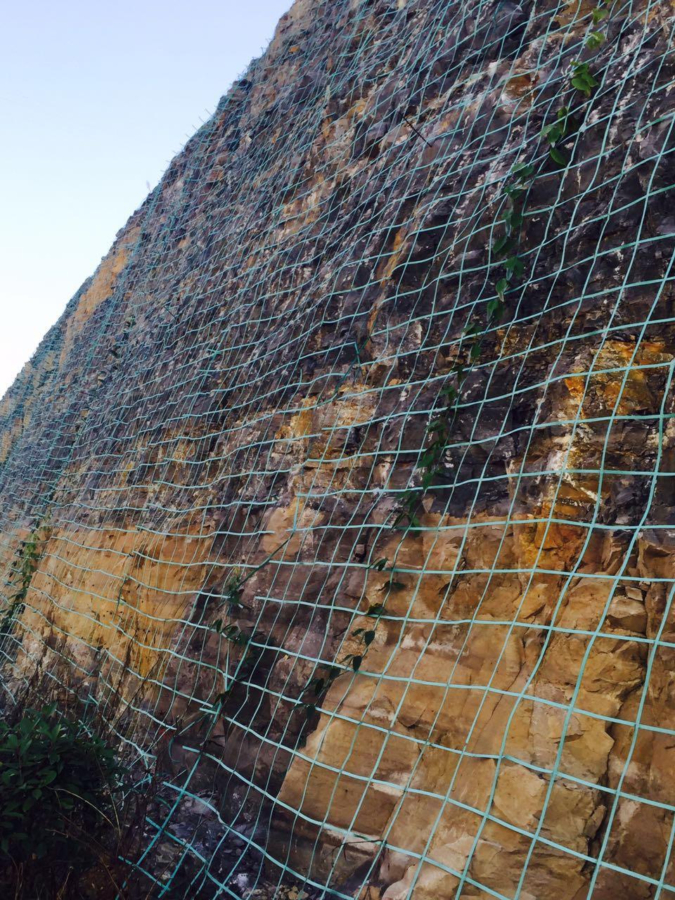 边坡绿化工程