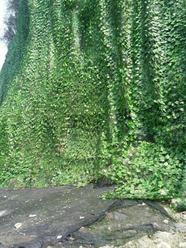 市政公路边坡绿化工程