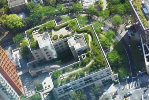 图2(绿色屋顶)