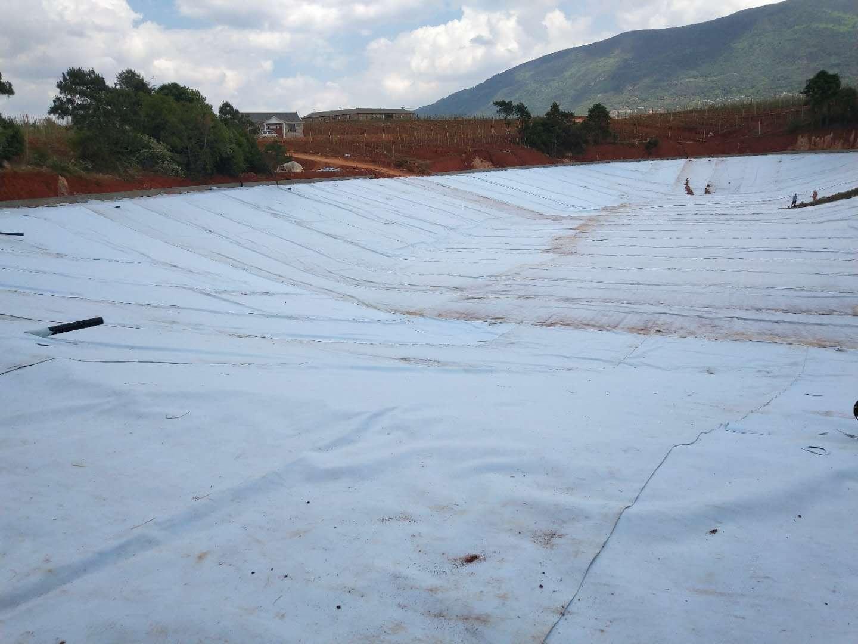 六盘水蓄水池防水毯铺设